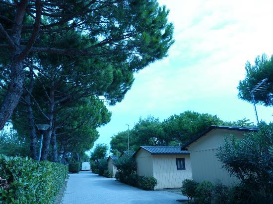 Ca' Berton Village: bungalows