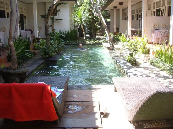 Little Pond Homestay: Luscious pool..........