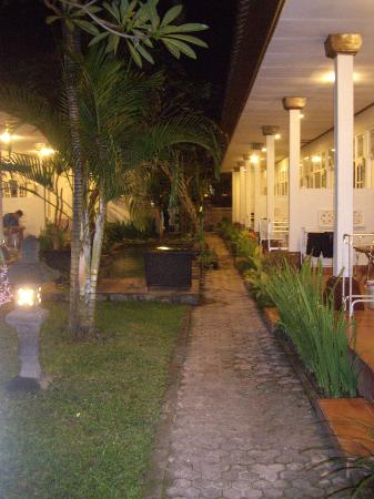 Little Pond Homestay: The gardens at night........