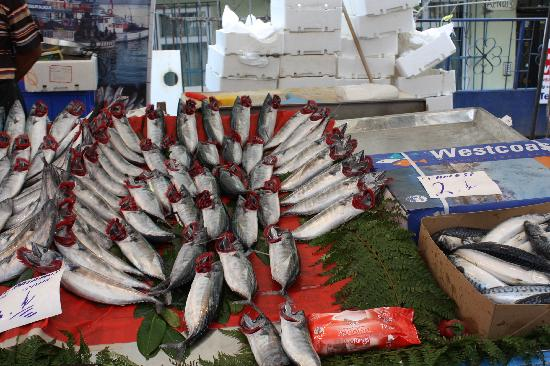 The Other Tour: Fresh fish for sale - the gills are flipped out to show freshness
