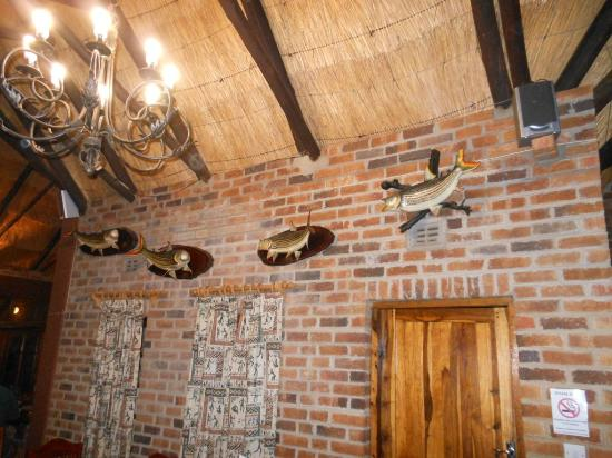 Southern Comfort Lodge: Some of the fish mounts on the wall.
