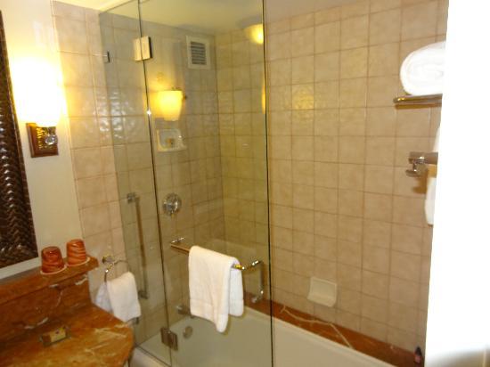 Four Seasons Hotel Austin: Great shower