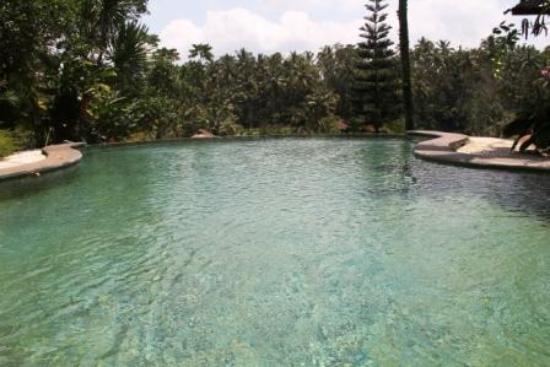 Graha Moding Villas: pool gleich vor der zimmertür :)