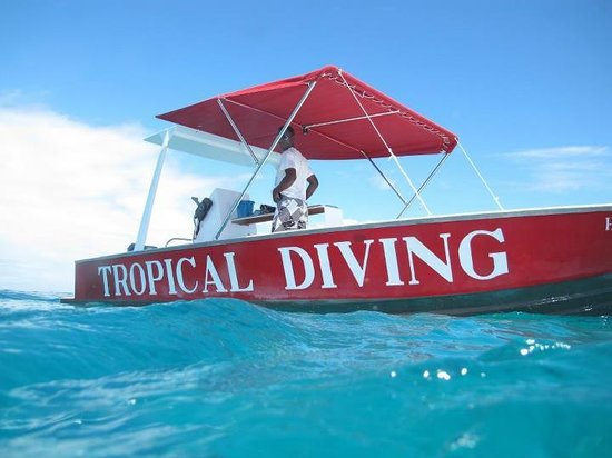 Tropical Diving: bateau