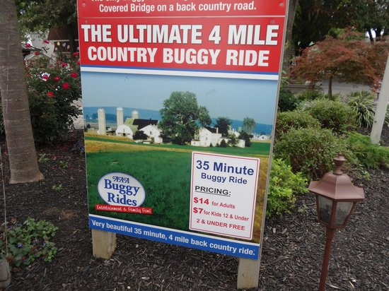 AAA Buggy Rides