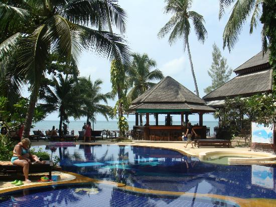 Sand Sea Resort & Spa: swimming pool and ocean