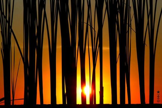 Amanaska Bali: coucher de soleil