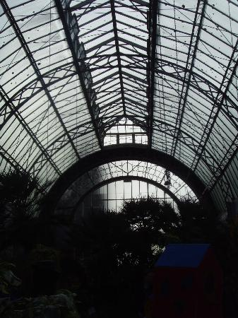 Auckland Domain: Winter gardens