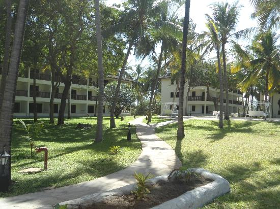 Emrald Flamingo Beach Resort & Spa: Hotel Grounds from the balcony.