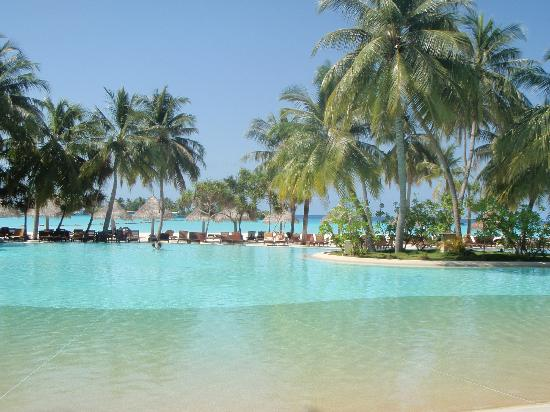 Sun Island Resort and Spa : view on pool and beach