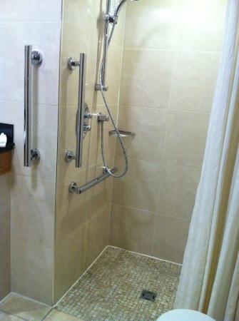 Brooks Hotel: Bathroom Left walk in shower