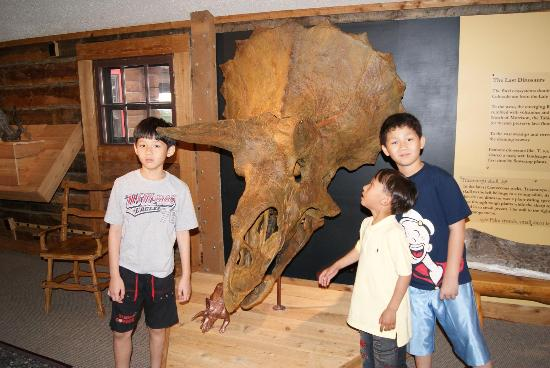 Morrison Natural History Museum: Morrison Dinosaurs