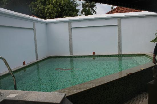 Kumarakom Lake Resort: Pool in the Villa