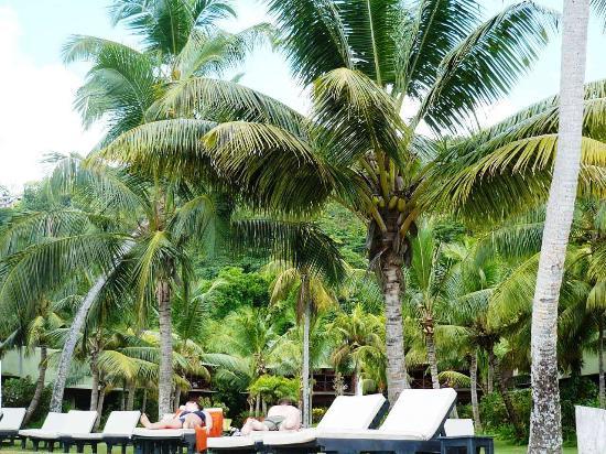 Berjaya Praslin Resort - Seychelles: На территории отеля
