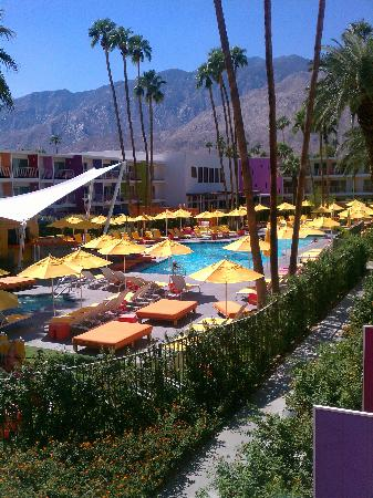 The Saguaro Palm Springs, a Joie de Vivre Hotel: great view