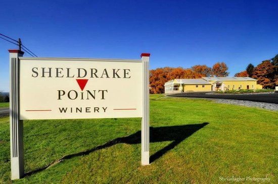 Sheldrake Point Winery Tasting Room Hector: Sheldrake Point Winery on Seneca