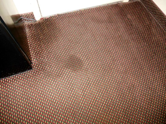 Americas Best Value Inn Mt Vernon: carpet near front door