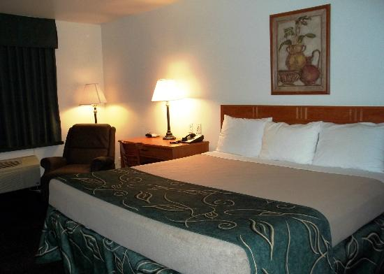 Baymont Inn & Suites Hearne : Guest Room