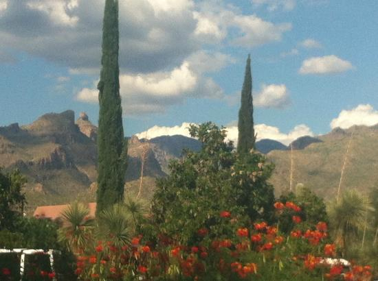 Canyon Ranch in Tucson: Beautiful vistas surround the resort
