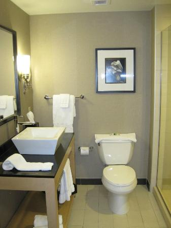Cambria Hotel & Suites: modern and spotless bathroom