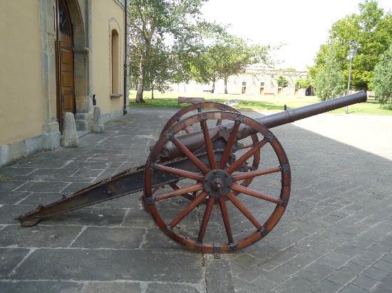 Conjunto Fortificado de Pamplona: CAÑÓN EN LA CIUDADELA