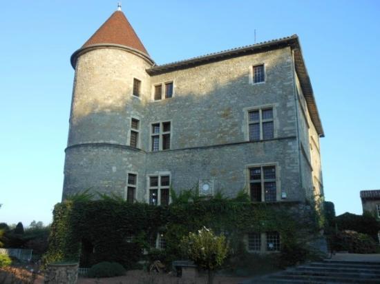 Chateau de Tanay : castello