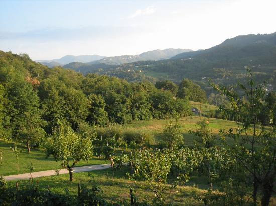 Agriturismo Braccicorti: The view from our room