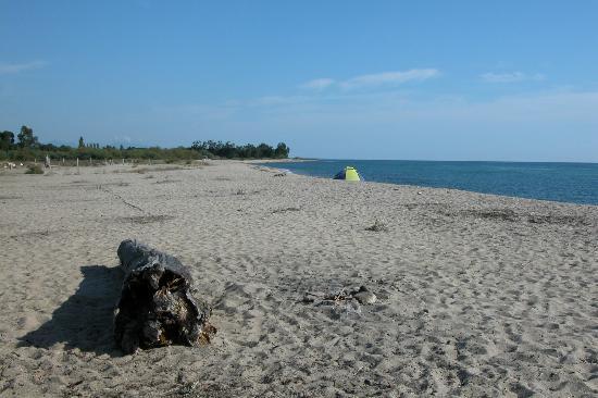 Camping Les Eucalyptus: la spiaggia