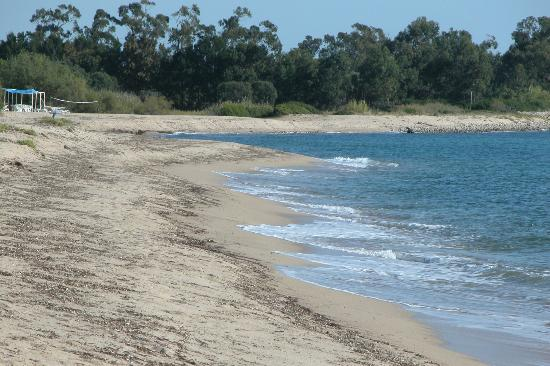 Camping Les Eucalyptus: la spiaggia 2