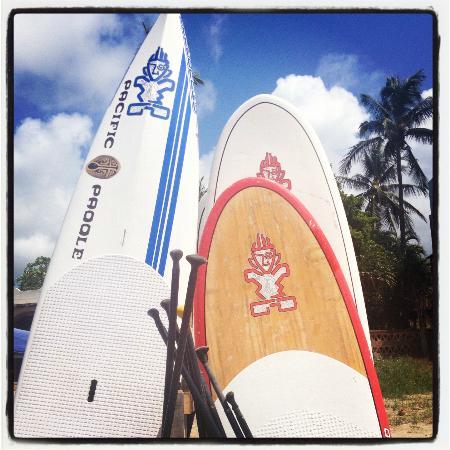 Playa Escondida: Surf and Paddleboard in Sayulita