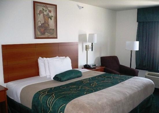Oak Tree Inn Clinton: Guest Room