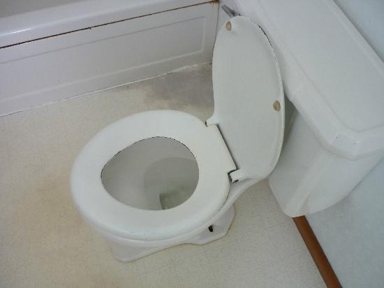 Lanz's Motel, Cottages & RV Campground : Seat on the toilet was rusted. It did flush, though