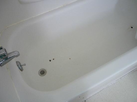 Lanz's Motel, Cottages & RV Campground : Bath tub had spots of rust