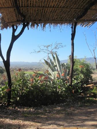 Amber Lagoon: Aussicht vom Camp