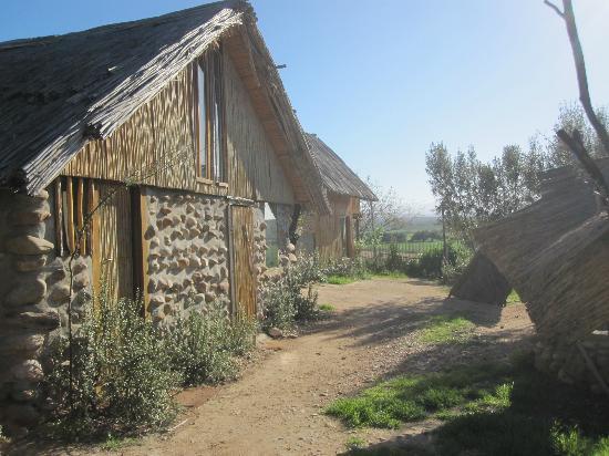 Amber Lagoon: Unterkunft Holzhütte