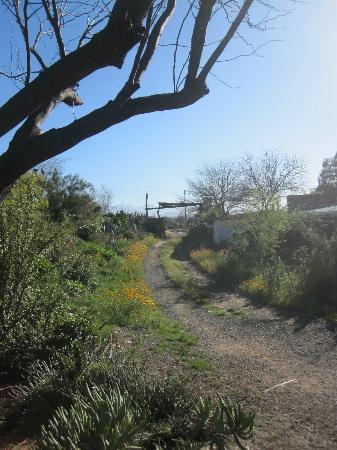Amber Lagoon: Eingang zum Camp