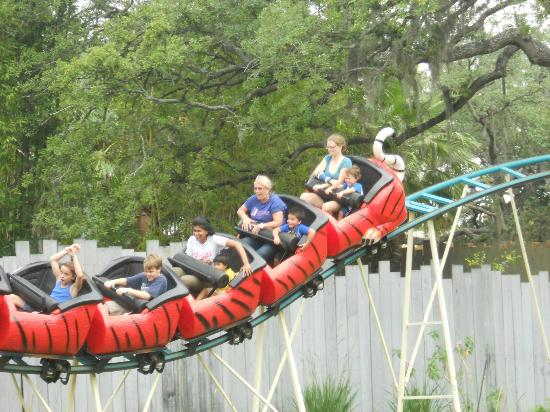 Tampa's Lowry Park Zoo: WHEEEEE