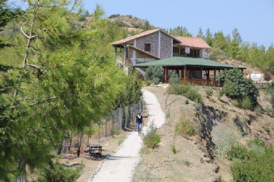 Limnitis, Kypros: cyprus organic farm