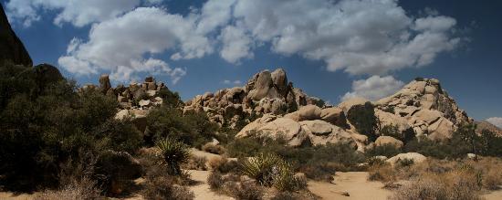 Joshua Tree National Park, Califórnia: Hidden valley panorama
