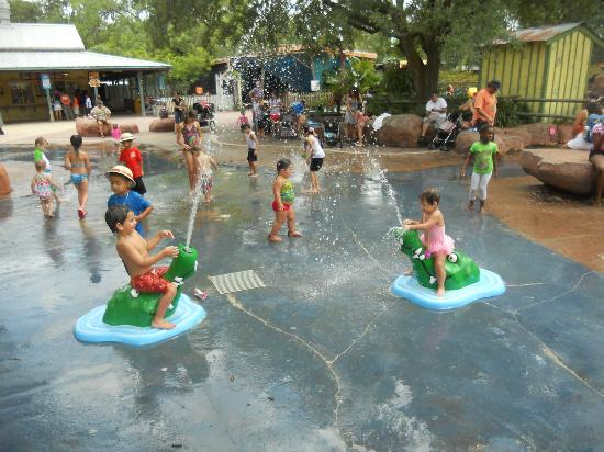 ZooTampa at Lowry Park: Bring your towel. It's worth the fun.
