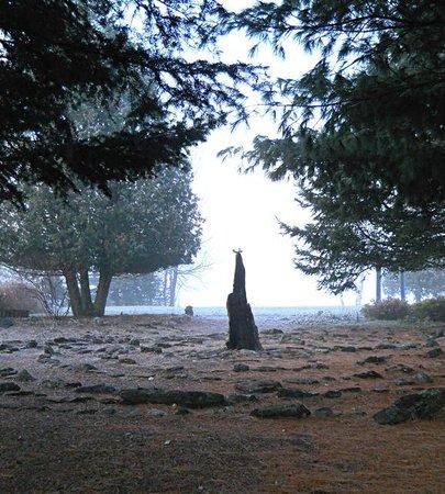 Grail Springs照片