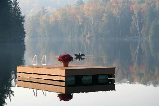 Grail Springs Retreat: Chalice Lake, private, spring-fed, swim, canoe