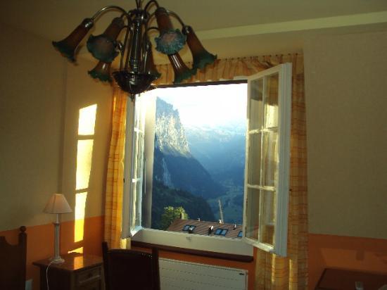 호텔 벨베데레 사진