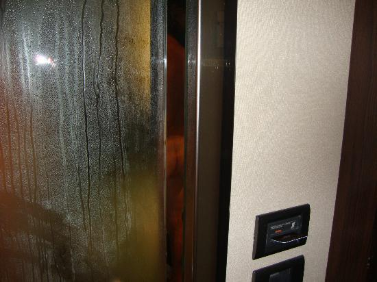 Max Hotel Livorno: glass(!)door to the bathroom, openning between door and wall,enjoy view and smell !!