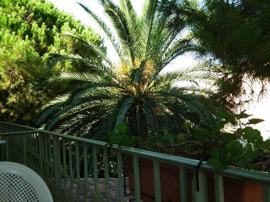 Hotel Le Ponteil : Terrasse de notre chambre