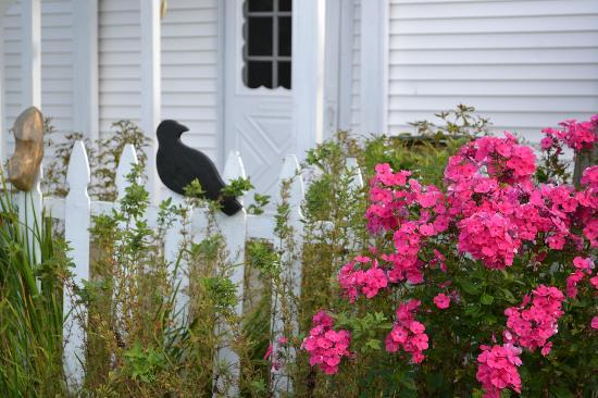 Combes Family Inn: Ruth has a great garden!