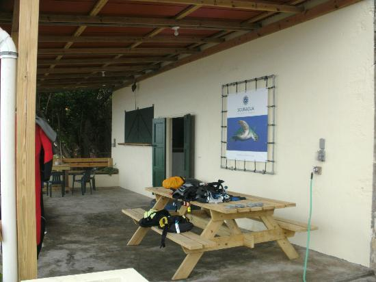 Scubaqua Dive Center: Shop back deck right on the water!