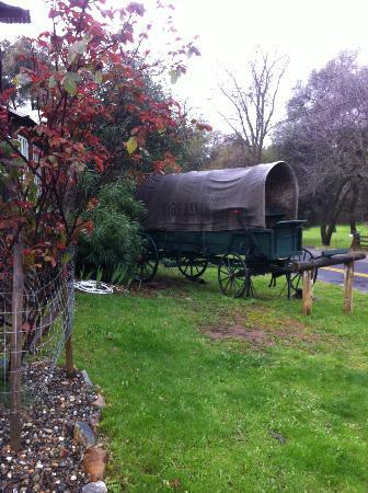 49er RV Ranch: A real covered wagon!