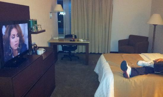 Holiday Inn Guadalajara Select照片