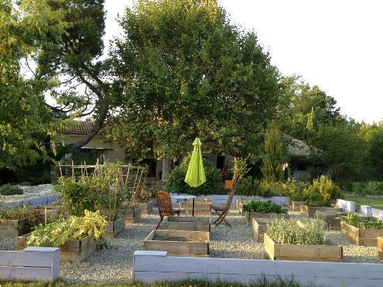 Couleur Lavande: Herb Garden
